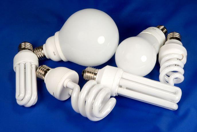 Внешний вид ламп может сильно различаться.