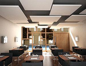 Потолок отделан плитами Rockfon