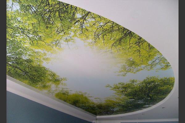 Plafond Sous Sol Idee Versailles Tarif M2 Renovation