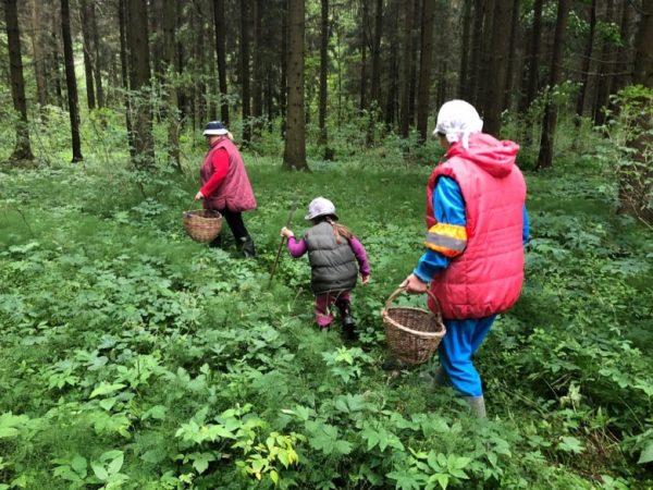при походе в лес за грибами, надевайте яркую одежду, берите воду, спички и старайтесь зарядить телефон перед поездкой.