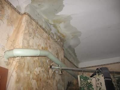 Гидроизоляция потолка в ванной своими руками: инструкция с ф.