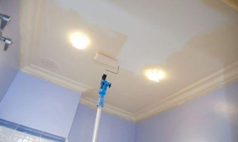 Какую краску лучше купить для покраски потолка резинобитумная мастика в тубах