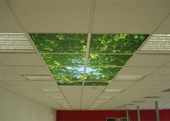 Подвесной потолок армстронг с использованием стеклянных плит