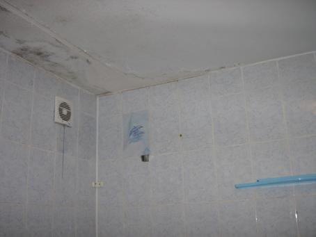 какой же потолок сделать в ванной комнате