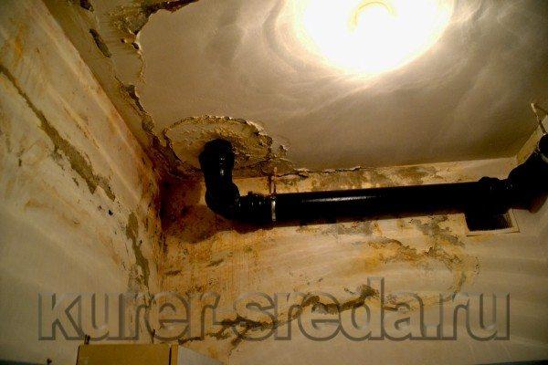 Мириться с этим безобразием больше нельзя. Чем покрыть потолок в ванной?