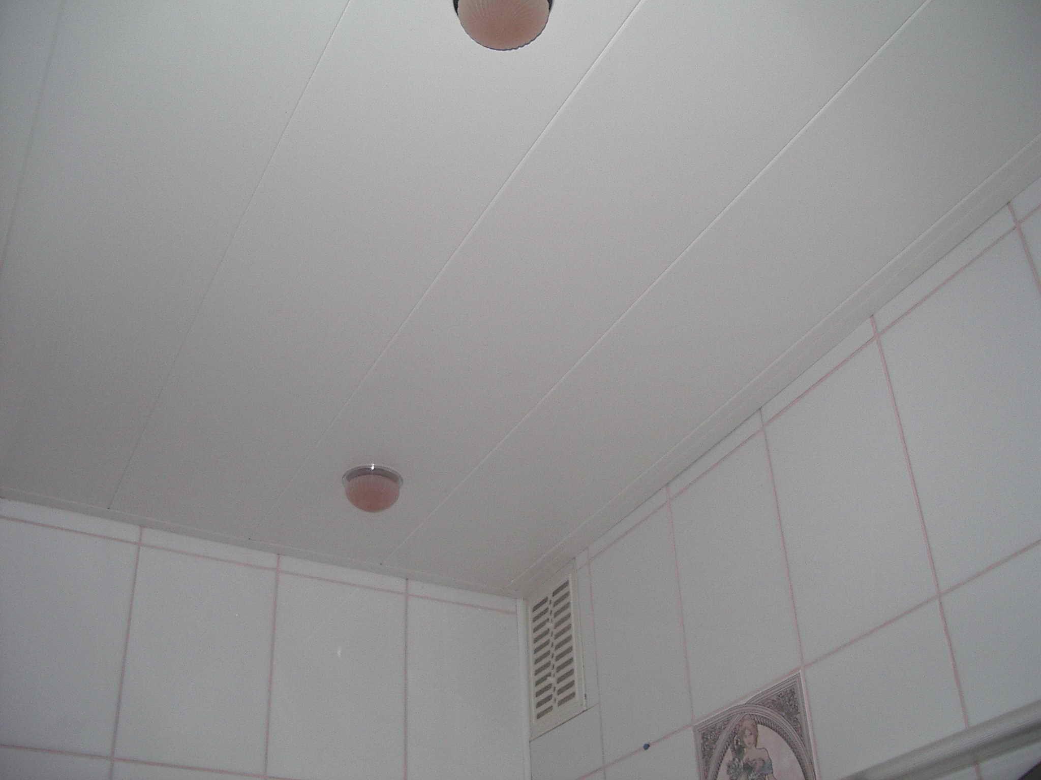 Листы пластика для потолка 4