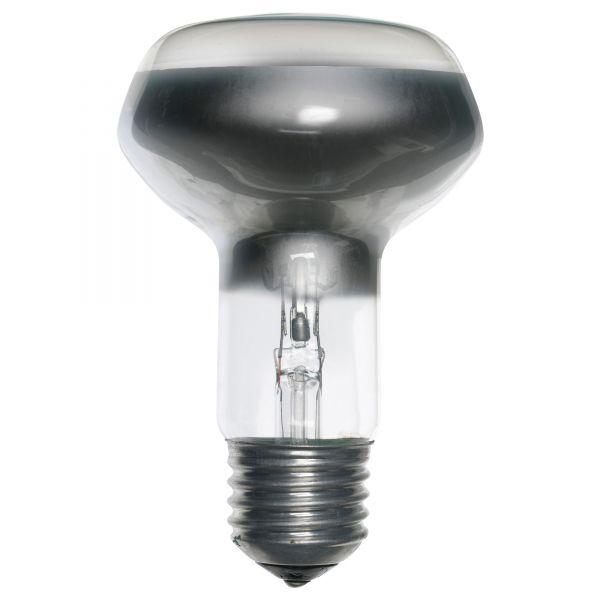 Галогенные лампы часто продаются под стандартный патрон и обычное сетевое напряжение.