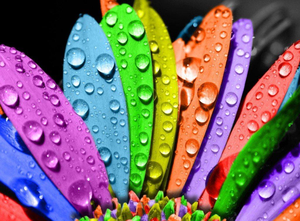 Латексные краски делают поверхность гидрофобной и достаточно устойчивой к истиранию.