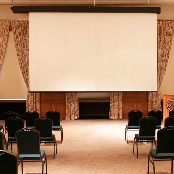 Модель Rolleramic можно использовать в большом кинозале.
