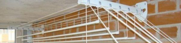 На фото: конструкция лианы такова, что в сложенном состоянии она почти не занимает места