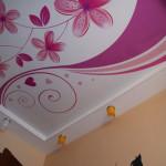 Натяжной потолок и использованием фотопечати