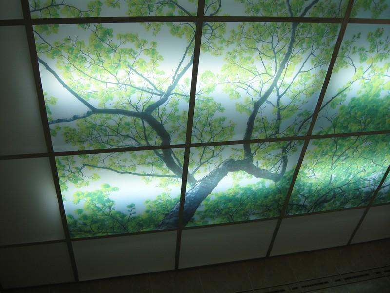Потолки акриловые с подсветкой