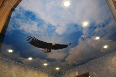 Натяжные потолки с сюжетным фоторисунком привнесут в помещение подходящую атмосферу