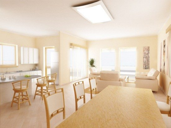 Окрашенный потолок подходит практически под любое стилистическое оформление кухни