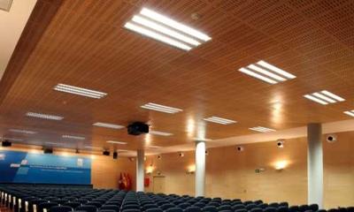 В некоторых офисных помещениях устанавливают специальные акустические потолки