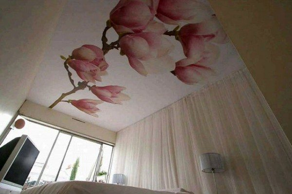 Пример натяжного потолка с рисунком