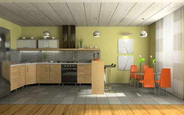 Пример современного интерьера кухни с пластиковыми панелями на потолке