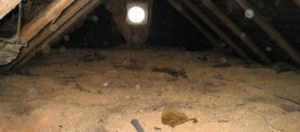 Укладка опилочного раствора со стороны мансарды деревянного дома