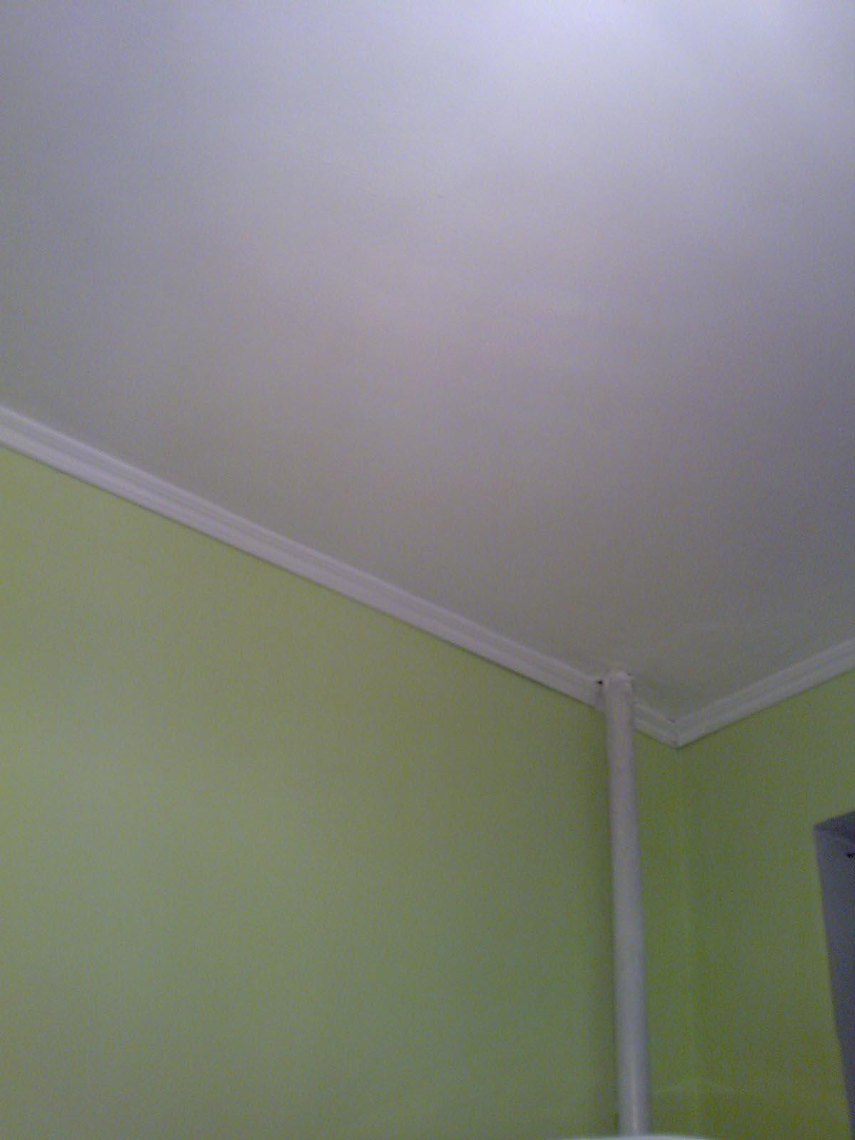 Plafond staff perfore fort de france estimation prix au m2 maison prix faux plafond armstrong - Plafond heeft de franse ...